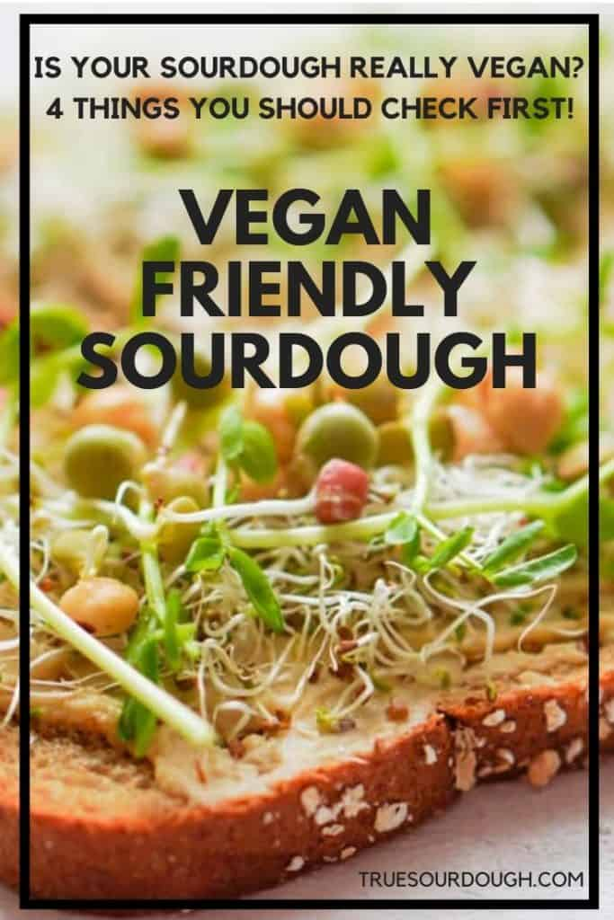 Is Sourdough Bread Vegan Friendly? 4 Things to Look Out For