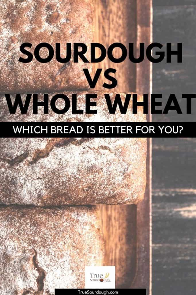 Sourdough Bread vs Whole Wheat: A Guide to Which is Better