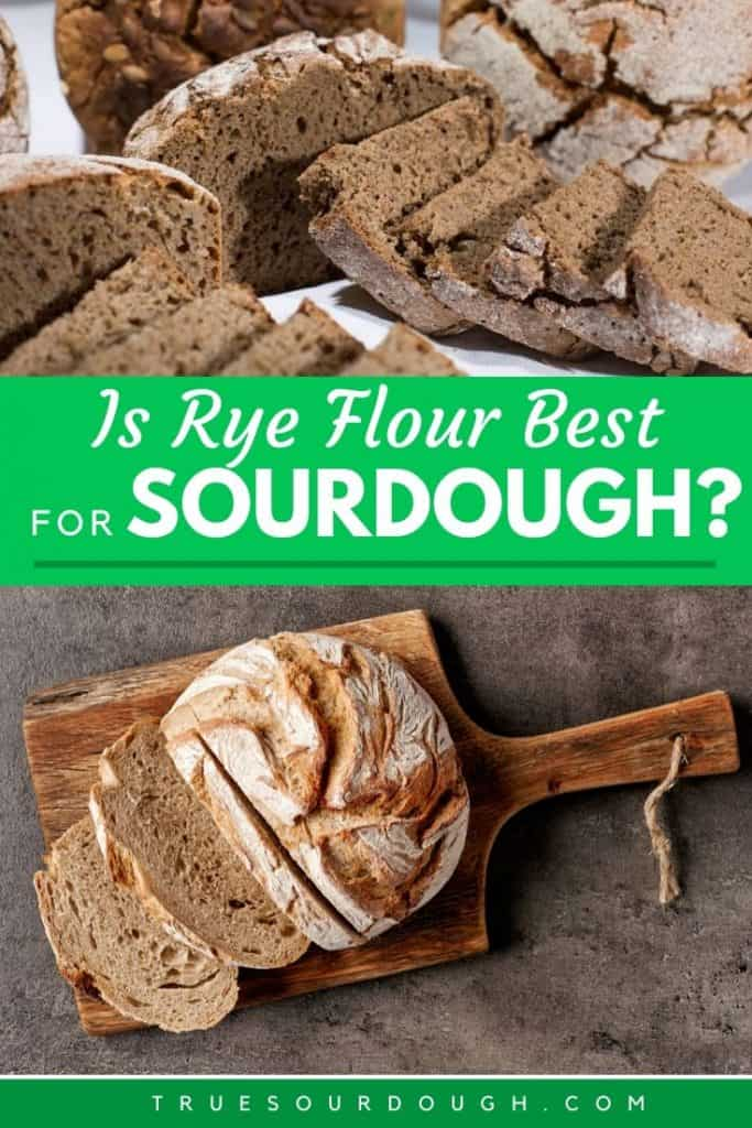 6 Reasons Rye is Popular in Sourdough & What to Know Before Using it