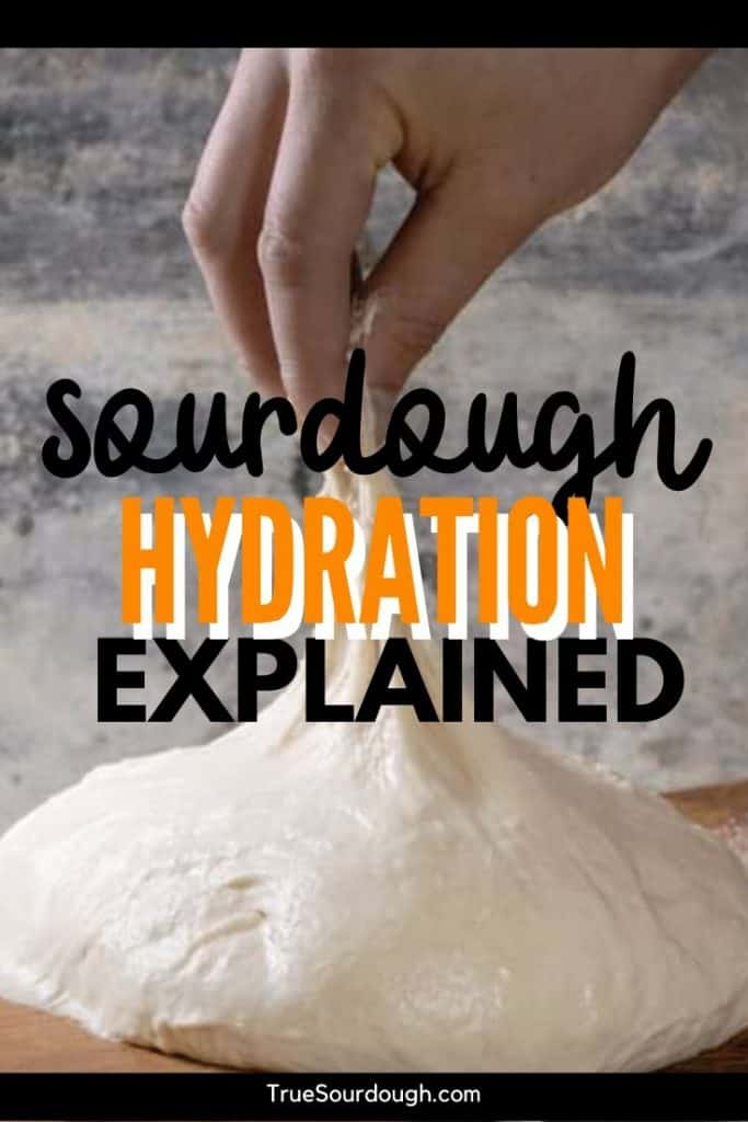 Sourdough Hydration Explained (What, Why, How & When)