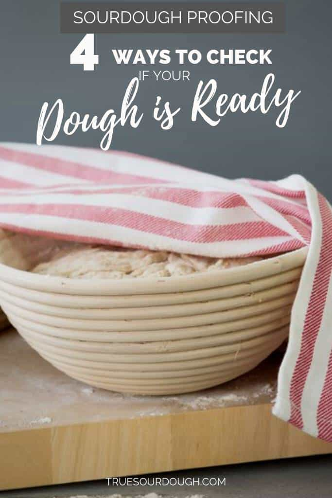 4 Signs Your Sourdough has Finished Proofing