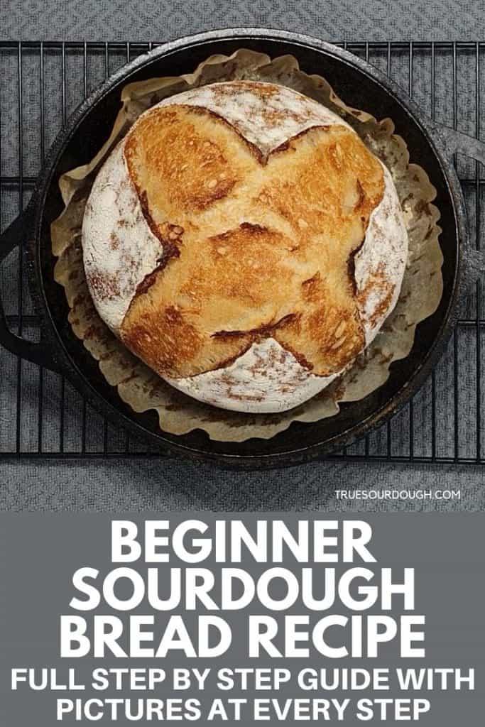 Beginner Sourdough Bread: Full Guide & Recipe